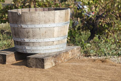 Traditional Vat. Of Grape Harvest in the vineyard Royalty Free Stock Image