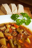 Traditional vegetable stew Royalty Free Stock Image