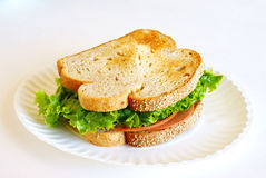 Traditional Vegetarian Soy Sandwich on Paper Plate Royalty Free Stock Images