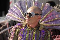 Traditional Venetian Carnival 2011. Stock Photography