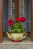 Traditional Venetian wondow with flowers in the pot Stock Image