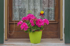 Traditional Venetian wondow with flowers in the pot Stock Images