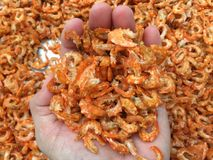 Traditional Vietnamese cuisine: dried shrimp. Vietnamese seafood for Tet event royalty free stock photos