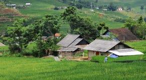 Traditional vietnamesse village, Vietnam Royalty Free Stock Image