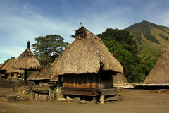 Traditional vilage on Flores stock photography