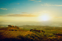 Traditional villa in Tuscany. Famous vineyard in Italy Stock Photo