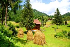 Traditional village in Apuseni Mountains Royalty Free Stock Image