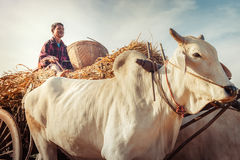 Traditional village life in asian countryside. Myanmar Stock Photo