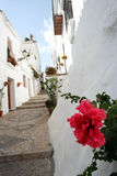 Traditional village in Spain. An peaceful alley in the little village of Frigliana, Spain royalty free stock image