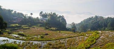 Traditional village, Tana Toraja Stock Image
