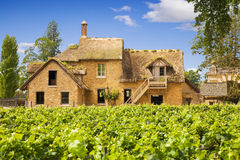 Traditional vineyard and old farm Royalty Free Stock Image