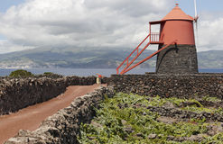 Traditional vineyard plantation windmill in Pico island. Azores. Stock Photos