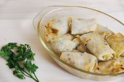 Traditional warm dish - cabbage rolls stock photography
