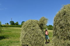 Traditional way of hay stocked in the village Stock Photos
