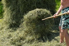Traditional way of hay stocked in the village Stock Image