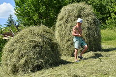 Traditional way of hay stocked in the village Stock Images