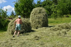 Traditional way of hay stocked in the village Royalty Free Stock Image