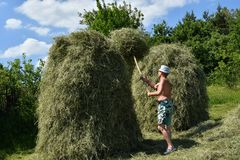 Traditional way of hay stocked in the village Stock Photography