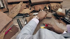 Traditional way to create cohibas. Cuban man rolling handmade cigars.