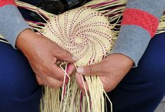 Traditional weaving of ecuadorian Panama Hat or Paja  Toquilla Straw Hats. UNESCO Intangible Cultural Heritage of Humanity stock photo