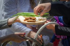 Traditional wedding day ceremony. Hand taking bread, salt, vodka stock photos