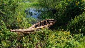Traditional weed boat,shore of Tana lake. Bahir Dar, Ethiopia Stock Photos