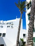 Traditional white architecture and standing next to palm trees against the beautiful blue sky in Nahariya, Israel.  Royalty Free Stock Photography