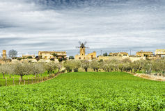 Traditional windmill in Mallorca, Balearic Islands. Spain Stock Photography