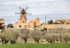 Traditional windmill in Mallorca, Balearic Islands. Spain Royalty Free Stock Photography