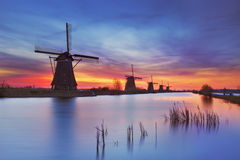Traditional windmills at sunrise, Kinderdijk, The Netherlands