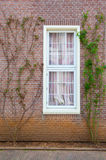 Traditional window Stock Images