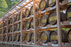 The traditional wine barrels wall. The traditional wine barrels are decorated to be the ancient wine barrel wall. So Antique and Retro style Royalty Free Stock Image