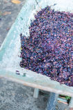 Traditional Wine Making Stock Images