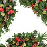 Traditional Winter Greenery Border Royalty Free Stock Photo