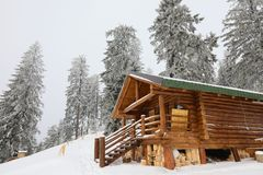 Traditional wood alpine chalet on a mountain slope against forest. In the background photographed from below royalty free stock image
