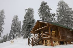 Traditional wood alpine chalet on a mountain slope against forest. In the background photographed from below royalty free stock photo