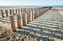 Traditional wooden breakwater on an empty Dutch beach. Two parallel rows of weathered wooden posts and their shadows on a sunny Dutch beach in winter. It is low Royalty Free Stock Images