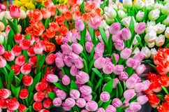 Traditional wooden colorful tulips at souvenir shop in Amsterdam Stock Image