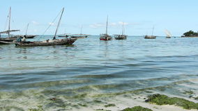 Traditional wooden dhows - Zanzibar stock footage