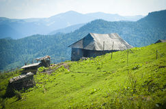Traditional wooden highland hut Royalty Free Stock Image