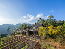 A traditional wooden house in the mountain Royalty Free Stock Image