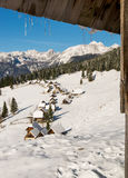 Traditional wooden hut in Alps Stock Images