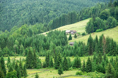 Traditional wooden mountain house on green field Royalty Free Stock Images