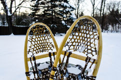 Traditional wooden snowshoes in the snow. Vintage pair of wooden snowshoes in the snow stock photography