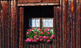 Traditional wooden window with red flowers Royalty Free Stock Photography