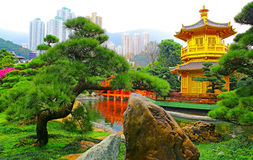 Traditional zen garden view Royalty Free Stock Photo
