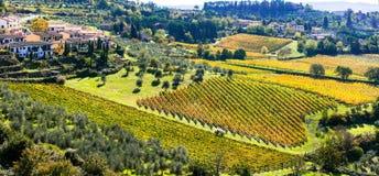 Traditionall krajobrazy i wioski Tuscany Chianti vi obrazy royalty free