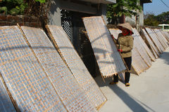 Traditionally made rice paper drying in sun, Vietnam Royalty Free Stock Photography