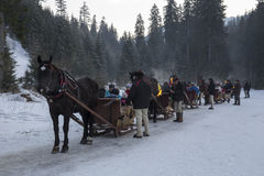 Traditionally sleigh ride in the polish mountains Stock Image