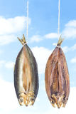 Traditionally smoked kippered herring on blue sky background Stock Photo